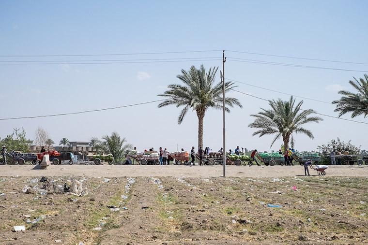 A long line of cargo carts wait to cross Bzebez bridge, Iraq.